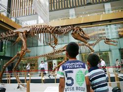 ダイオウイカ、昆虫、恐竜… 都内で開催中「大昆虫展」が大盛況
